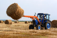 Haymaking. Preparation of hay for the winter a tractor Stock Photos