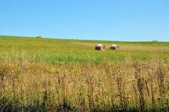 haymaking Стоковые Изображения RF