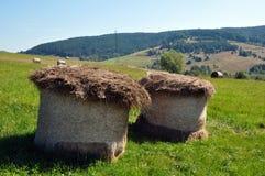 haymaking Стоковое Фото