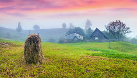 Haymaking in a Carpathian village. Royalty Free Stock Photography