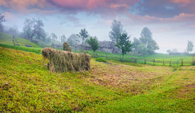 Haymaking in a Carpathian village. Stock Images
