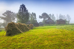 Haymaking in a Carpathian village Royalty Free Stock Photos