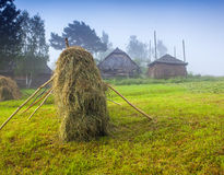 Haymaking in a Carpathian village. Stock Photos
