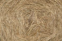 Close-up of bales of rolled hay. Stock Photography