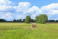 Haymaking en el día soleado Imagenes de archivo