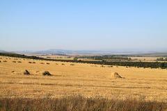 Haymaking en montañas Imagen de archivo libre de regalías