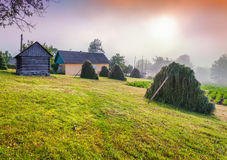 Haymaking en pueblo cárpato Ucrania, Europa imagenes de archivo