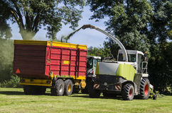 Haymaking, forage harvester Stock Photography