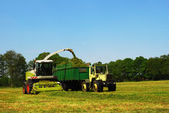 Haymaking, Germany Stock Photo