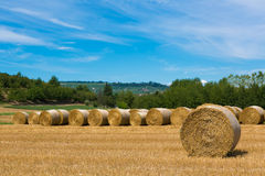 Haymaking in italian fields Royalty Free Stock Photo