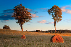 Haymaking in Masuria Stock Images