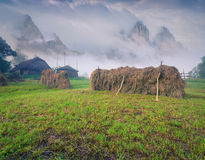 Haymaking in mountain village Stock Image