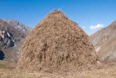 Haymaking in the mountains. A stack of fresh hay in the mountains Stock Image