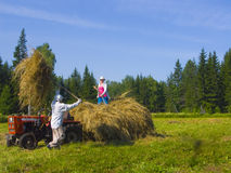 Haymaking in Siberia 17. The image of preparation of hay peasants in Siberia Royalty Free Stock Image