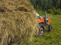 Haymaking in Siberia 2. The image of preparation of hay peasants in Siberia Royalty Free Stock Photography