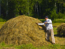 Haymaking in Siberia 20. The image of preparation of hay peasants in Siberia Royalty Free Stock Photo