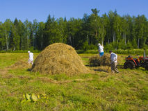 Haymaking in Siberia 22. The image of preparation of hay peasants in Siberia Royalty Free Stock Photo