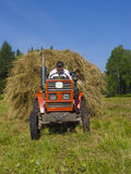 Haymaking in Siberia 4. The image of preparation of hay peasants in Siberia Stock Photos