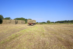 Haymaking time 2 Stock Photography