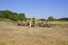 Haymaking time Royalty Free Stock Photo