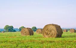 Haymaking time Stock Photos