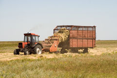 Haymaking time Stock Images