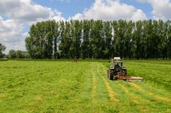 Haymaking tracktors in Flanders field. In spring stock photography