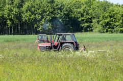 Haymaking Stock Photography