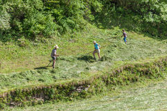 Haymaking in Valle Aurina, South Tyrol Stock Photography