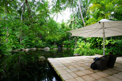 Hayman海岛澳大利亚 免版税图库摄影