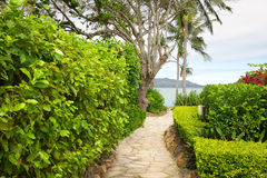Hayman Island Australia. Hayman Island Resort in Queensland, Australia Royalty Free Stock Image