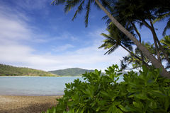 Hayman Island Australia. Tropical beach and ocean on Hayman Island Stock Image