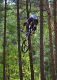 Freestyle Stunt Cyclist in mid air with trees in background. Stock Photos