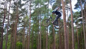 Freestyle  Stunt Cyclist in mid air with trees in background. HAYNES, BEDFORDSHIRE, ENGLAND - MAY 14, 2017:  Freestyle  Stunt Cyclist in mid air with trees in Royalty Free Stock Images