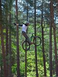 Freestyle  Stunt Cyclist in mid air very high with trees in background. Stock Photography
