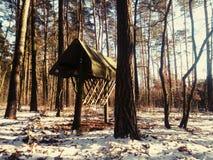 Hayrack i skog Arkivfoton
