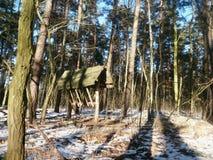Hayrack i skog Fotografering för Bildbyråer