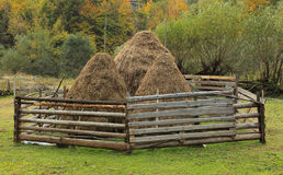 Hayricks. Three hayricks in Apuseni Mountains,Transylvania,Romania Stock Photography