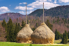 Hayricks in countryside. Two hay ricks in the countryside with mountains in background Stock Photo