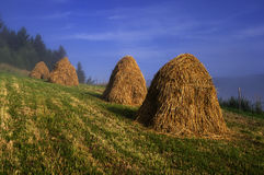 Hayricks. Hand made hayricks in Mala Fatra mountains, Slovakia Stock Photos