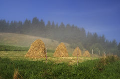 Hayricks. Hand made hayricks at Palenica hill, Mala Fatra, Slovakia Royalty Free Stock Image