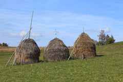 Hayricks in a mountainous area. Landscape with three hayricks in Apuseni Mountains,Transylvania,Romania Stock Image