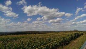 Hayride pumpkin farm royalty free stock images