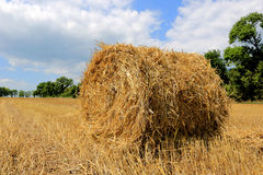 Hayroll on crop field Royalty Free Stock Photos