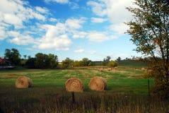 Hayrolls i ett fält Royaltyfri Foto