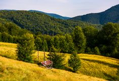 Hayshed near the forest in mountains. Beautiful summer scenery in evening royalty free stock images
