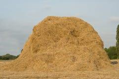 haystack łąka Fotografia Stock