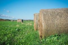 Haystack в поле Стоковые Фотографии RF