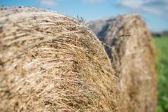 Haystack в поле Стоковая Фотография RF