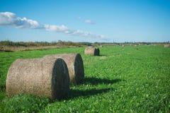 Haystack в поле Стоковое фото RF